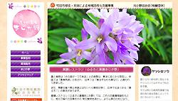 http://jouhou-kaihatsu.jp/ajk/