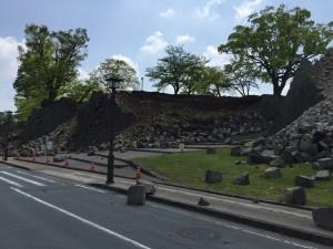 二の丸北側園路(2016.4.19撮影)