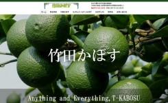 竹田かぼすホームページ 製作実績