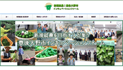 新規就農 農業をはじめる 豊後大野市インキュベーションファーム 公式サイト